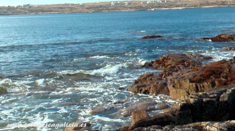 roca-y-ola-en-la-orilla